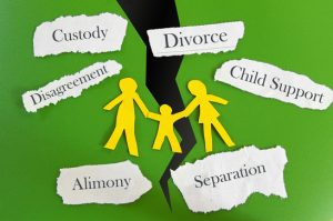 Family Law Mineola NY